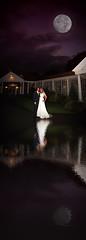 Wedding Reflections........