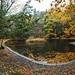 Hemlock Ravine Park Pond by laszlofromhalifax