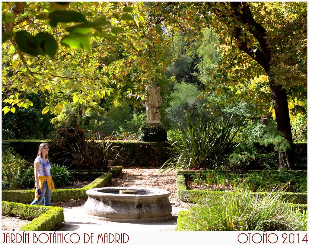 en el Jardín Botánico de Madrid en otoño de 2014