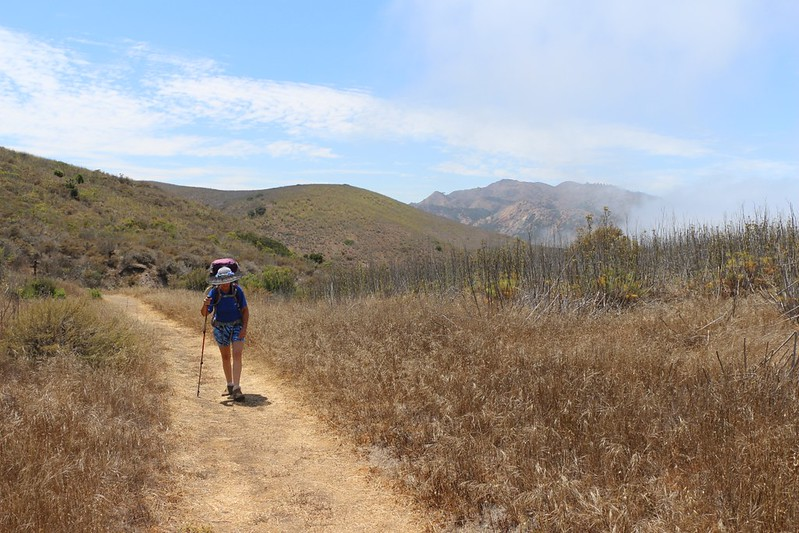 We reached the intersection with the Del Norte Trail, with Red Peak above the mist.