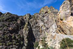 Kings Canyon & Sequoia - 327