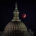 Lunar Eclipse (aka Blood Moon) Oct 8 2014 by caroline.angelo