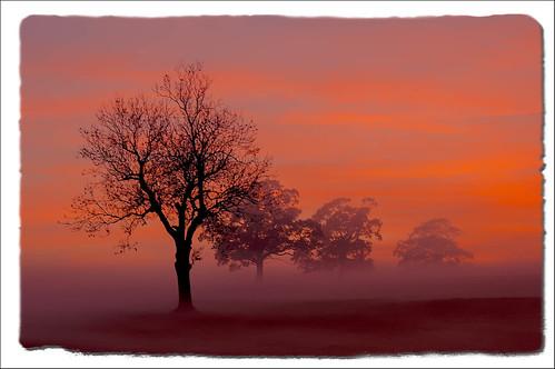 sunset england unitedkingdom leicester