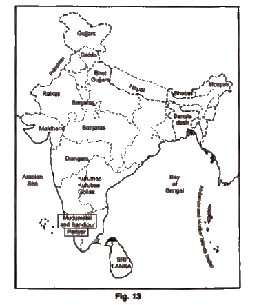 NCERT Solutions for Class 9th Social Science History Chapter 5 Pastoralists in the Modern World