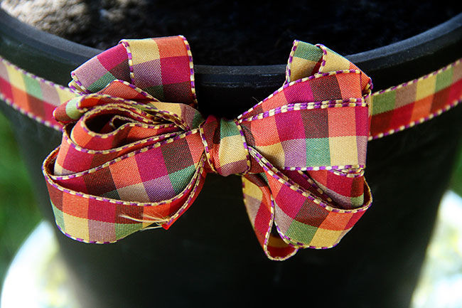 Halloween-Tree-Bow