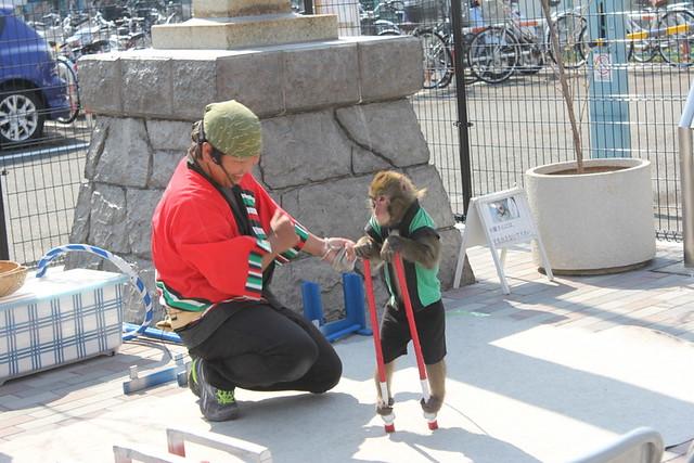 2014-03-16_00118_高松山