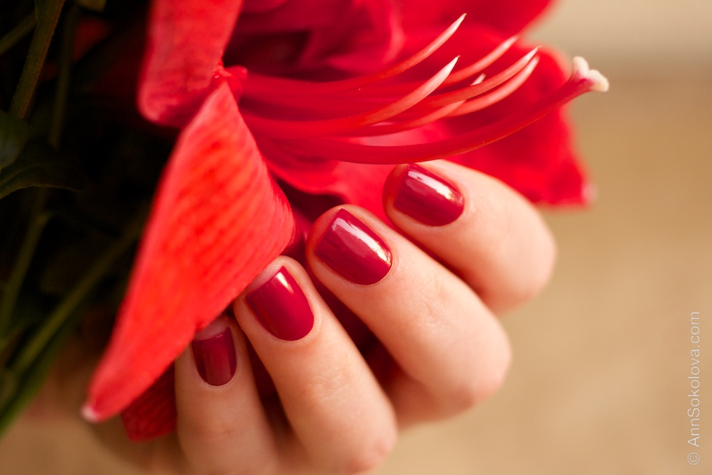 цвет ruby фото