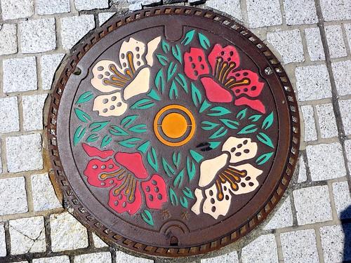 Okaya Nagano, manhole cover (長野県岡谷市のマンホール)