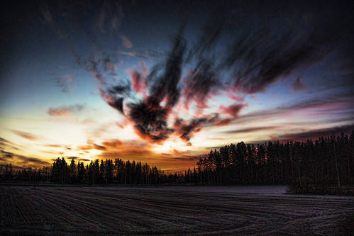 field sunrise nikon freeze coldmorning aw1 jyrkiliikanen