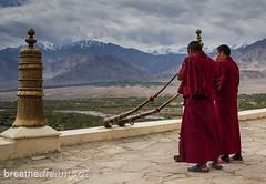 Ladakh Thiksey monks horn