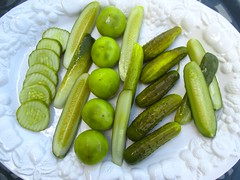 North Star Pickles