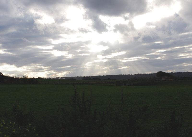 yorkshire countryside skies, Bumpkin Betty