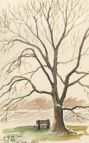Lake Marmo Winter Tree