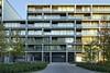 19 Dzielnica Housing