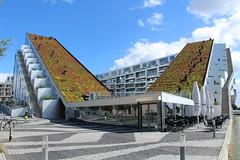 København - 8Tallet
