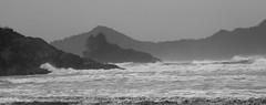 Chesterman Beachscape