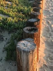 The Strand Redondo Beach