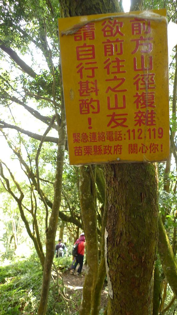 20141018-仙山接八仙古道 (98)