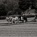Ploughing at the Weald and Downlnad Museum