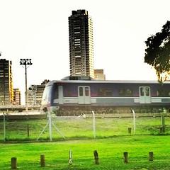 Tren y torre