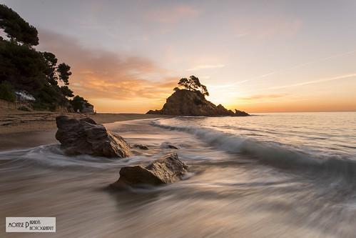 costa sunrise alba movimiento catalunya brava ola platja onada taronja caproig