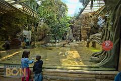 Zoo, Barcelona