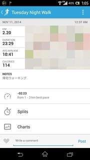 20141110_RunKeeper(Walking)