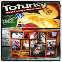 Happy Thanksgiving! #thanksgiving #tofurky