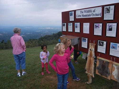 Sept 19 2014 Carter Mountain 2nd grade (17)