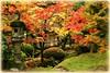 Tatton Park - The Japanese Garden