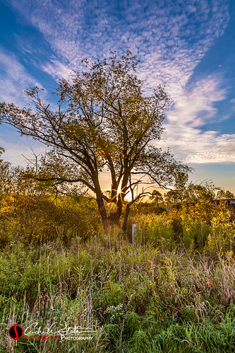 blue autumn sky orange tree green fall field grass composite wisconsin clouds sunrise canon landscape unitedstates waukesha foxriver hdr 28135mm landscapephotography discoverwisconsin travelwisconsin 5dmarkiii rivercrossingpark