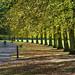Autumn - Calderstones Park by alancookson