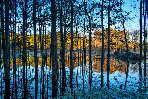 Gated Autumn Mirror by Geoff Livingston