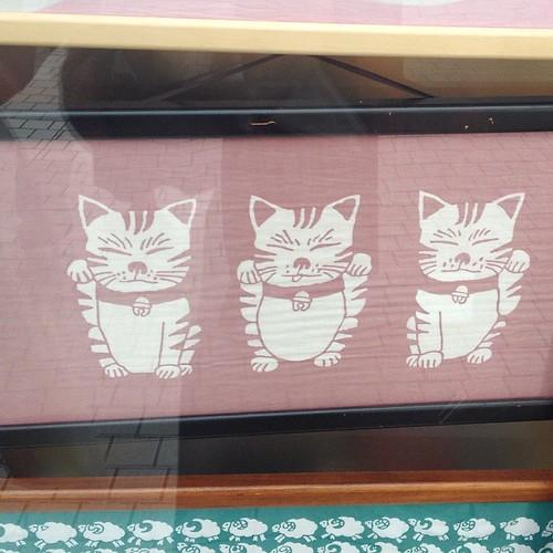 Yoyogi Park -- souvenir shop had this adorable cat print. I should've bought it!