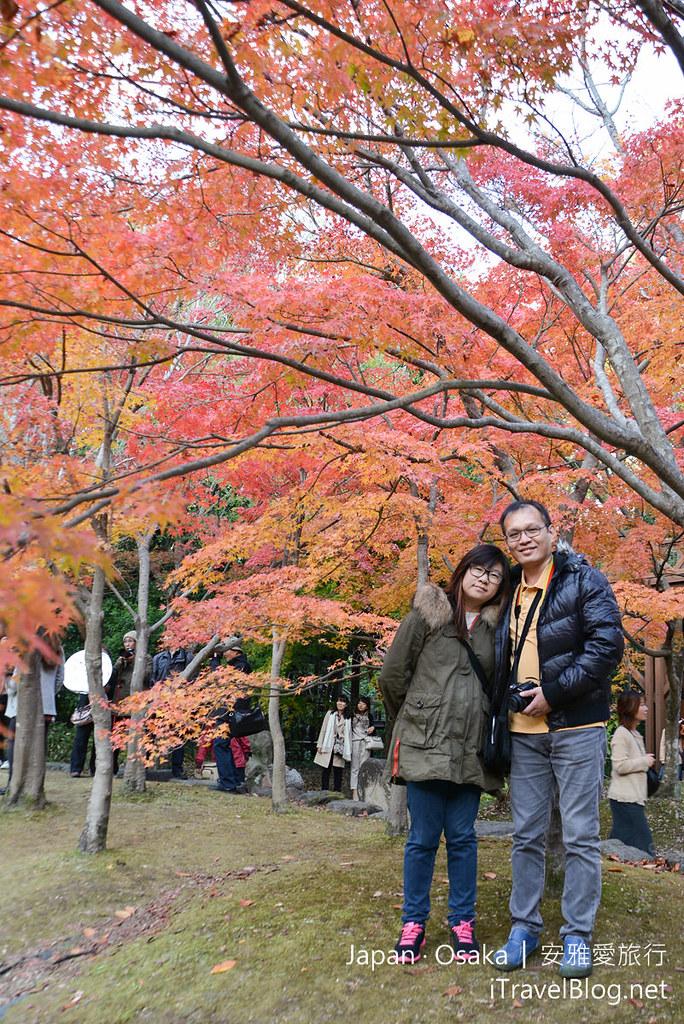 大阪赏枫 万博纪念公园 红叶庭园 17