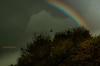 Rainbow by Sakerfalke