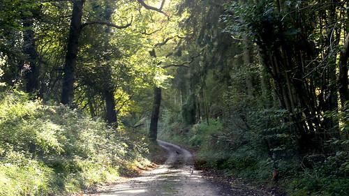 Challock, Kent