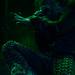 Rob Zombie_5308