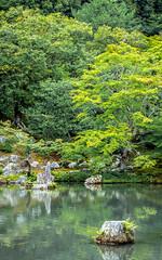 Tenryu Pond