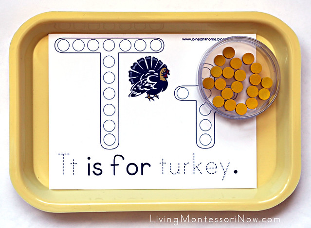 Tt Is for Turkey Tray