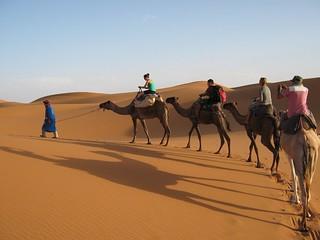 Trekking en camellos.