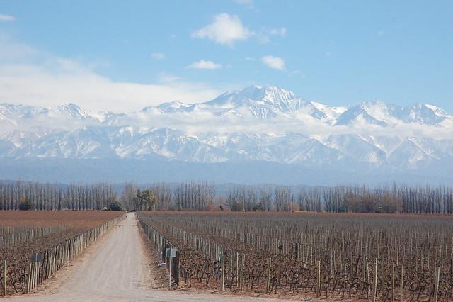 Wine Tasting at Catena Zapata in Luján de Cuyo, Mendoza, Argentina