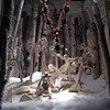 Lord & Taylor's windows are magical. #holidays #seasons #windowshopping #5thave #weekend #playingtourist #nyc #faeries