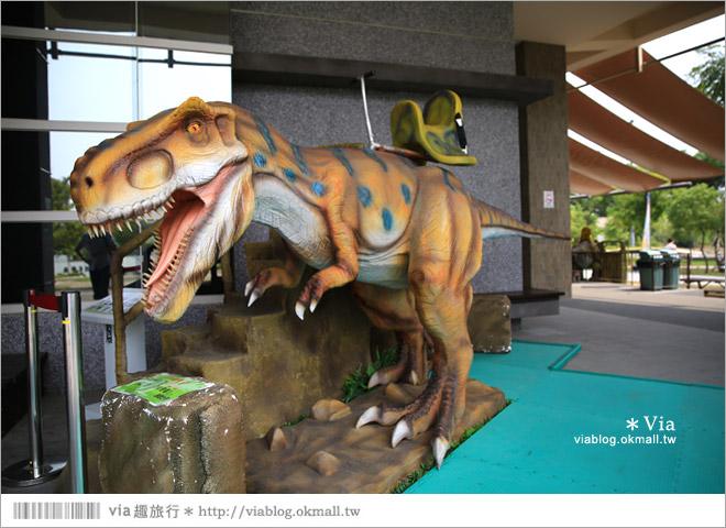 【台南南科景點】樹谷生活科學館~超大的劍齒象化石!有趣又能長知識的博物館!5