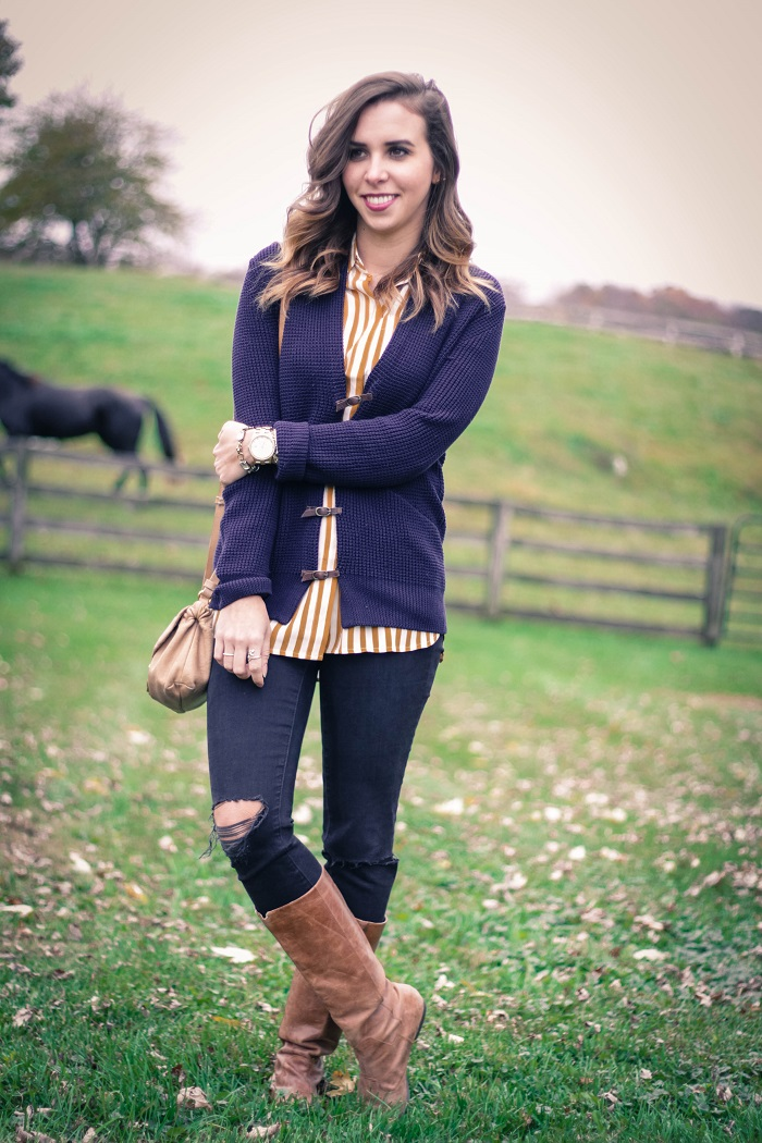 fall outfit. fall layers. virginia winery. knit sweater,. vertical stripe silk shirt. distressed black skinnies. va darling. 1