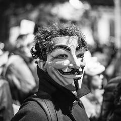 Operation Vendetta 2014