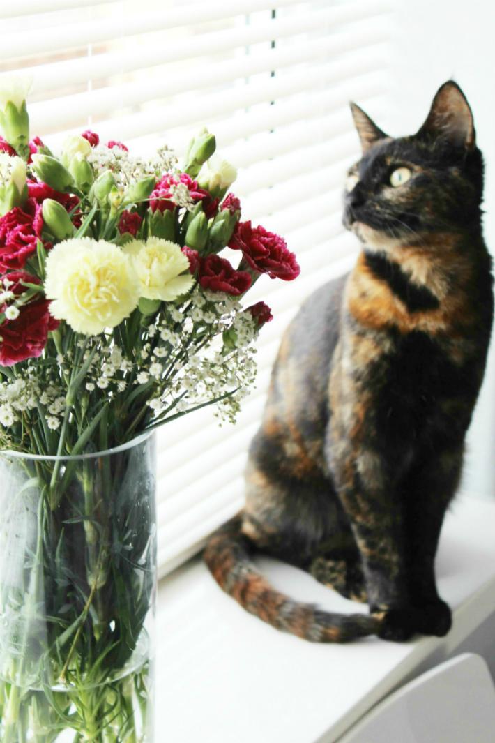 Fresh Flowers 2