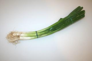 11 - Zutat Frühlingszwiebeln / Ingredient scallions