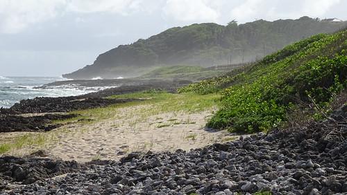 ocean green beach nature water rock stone landscape sand wave caribbean falaise guadeloupe antilles caraïbes frenchwestindies mariegalante antillesfrançaises mariegalanteisland
