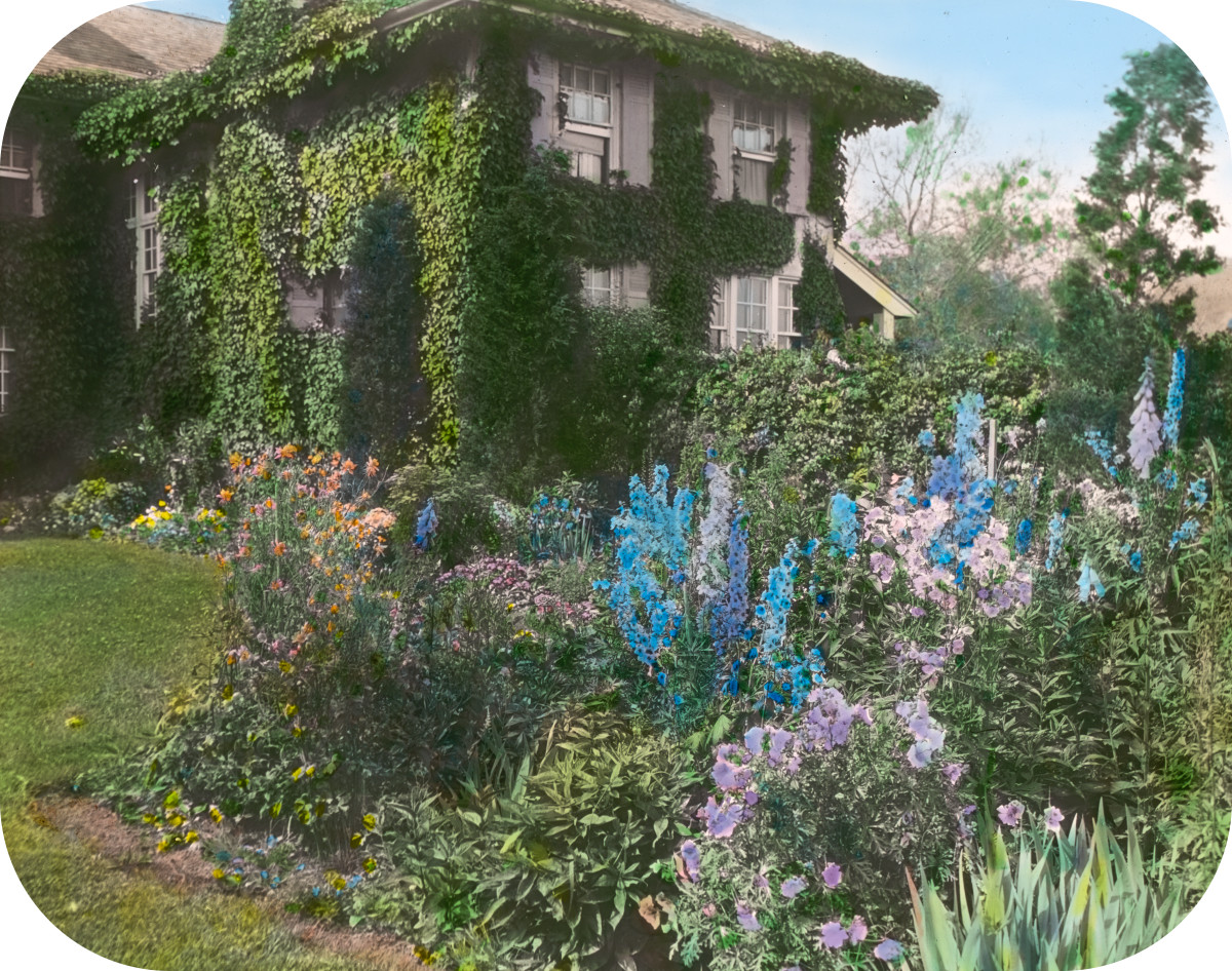 Dr. Frederick Kellogg Hollister house, Lily Pond Lane, East Hampton, New York. Delphiniums